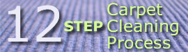 Learn more about the Gerlach Cleaning Systems 12 Step Carpet Cleaning Process